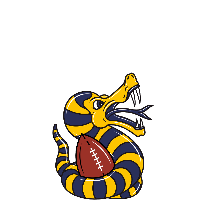 vipers-modena