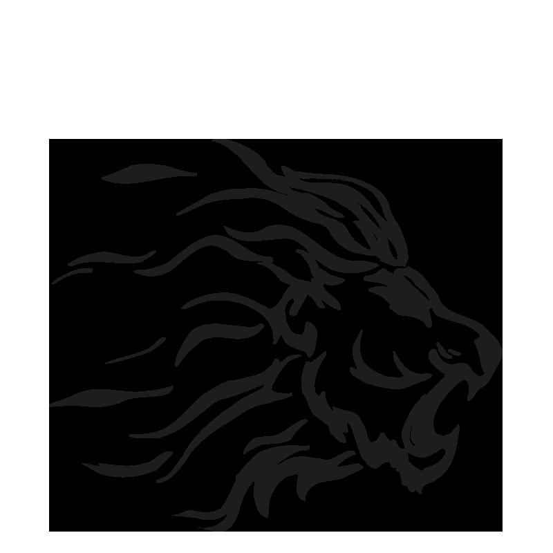lions-bergamo